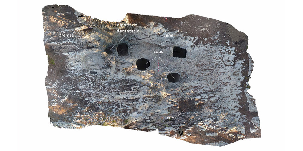 Fig. 6. Celler localitzat fora muralles (Fotogrametria Xavier Esteve, Projecte ECLOC, Arxiu MAC-Olèrdola)