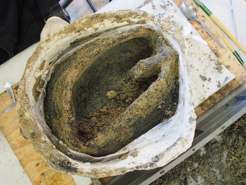 Figura 8. Imatge de la cara superior del cistell un cop excavat el seu contingut
