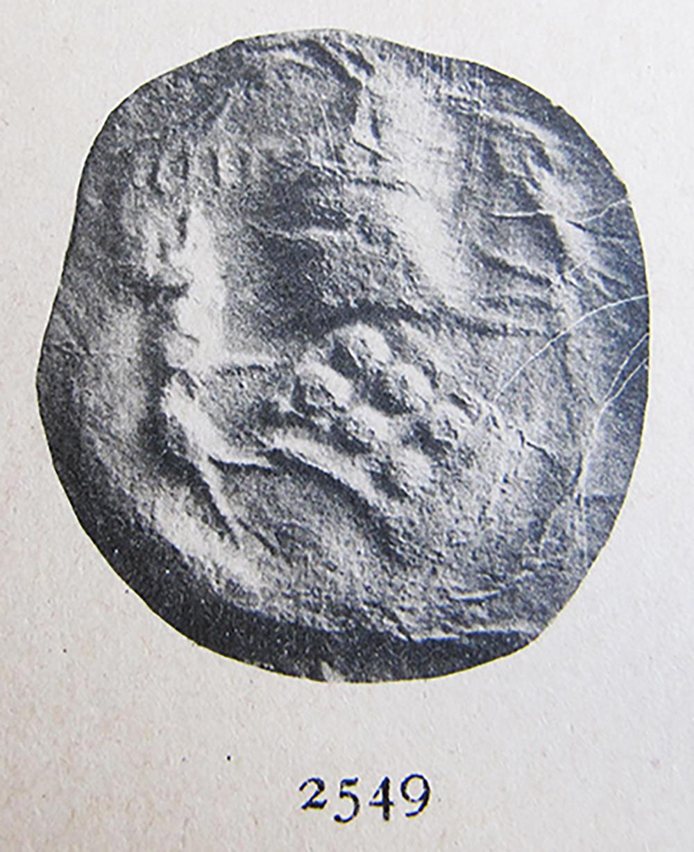 Figura 2. Segell de Guillem Ramon de Montcada d'un document de l'any 1443. Número 2549 de Sagarra