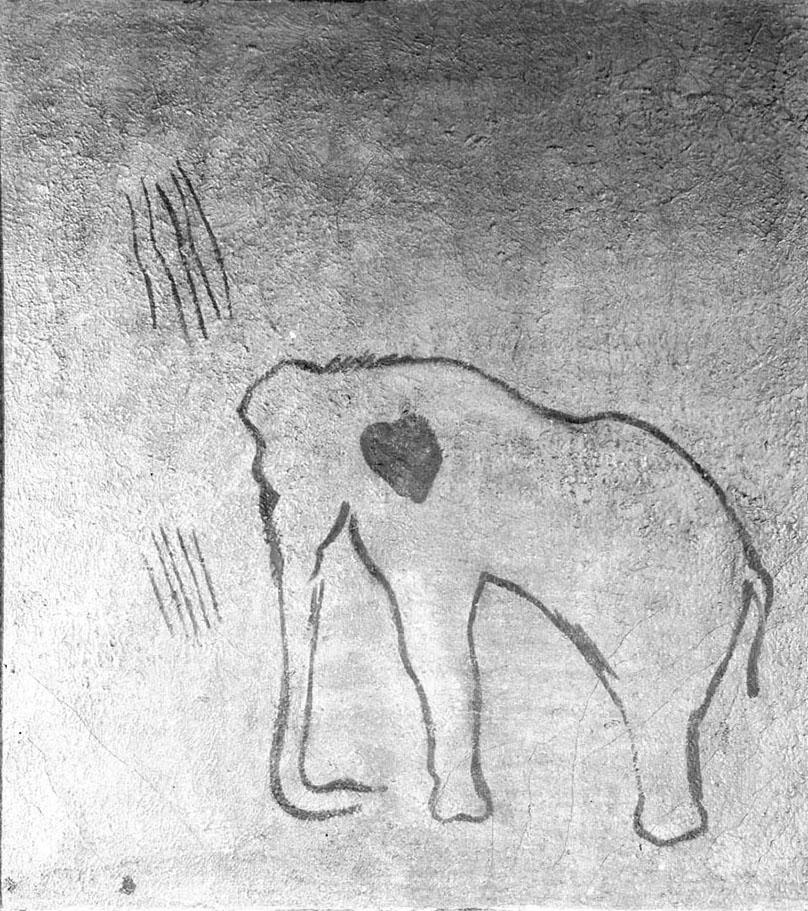 Cova del Pindal (Pimiango-Colombres, Astúries). MAC. Arxiu Històric i Fotogràfic