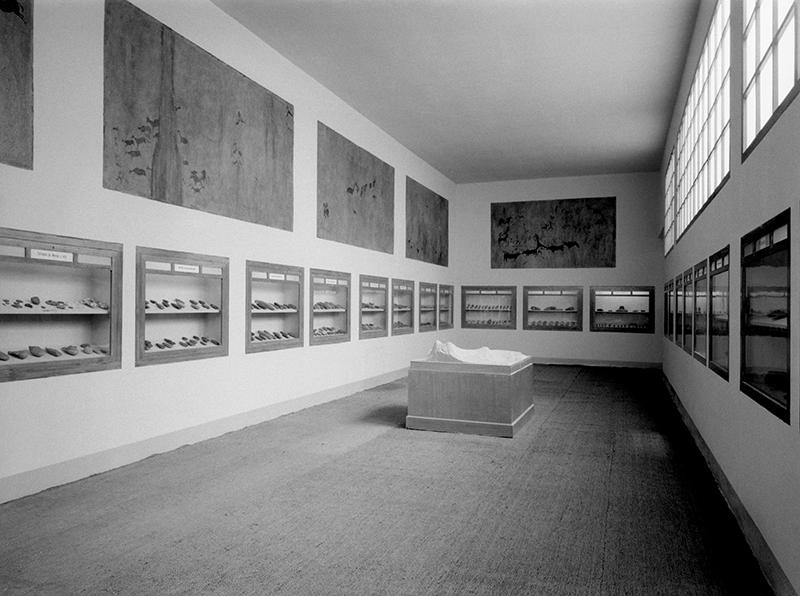 Situació de les pintures sobre les vitrines a l'antiga sala III, al fons s'hi poden distingir les pintures de la Cueva de la Vieja. MAC. Arxiu Històric i Fotogràfic