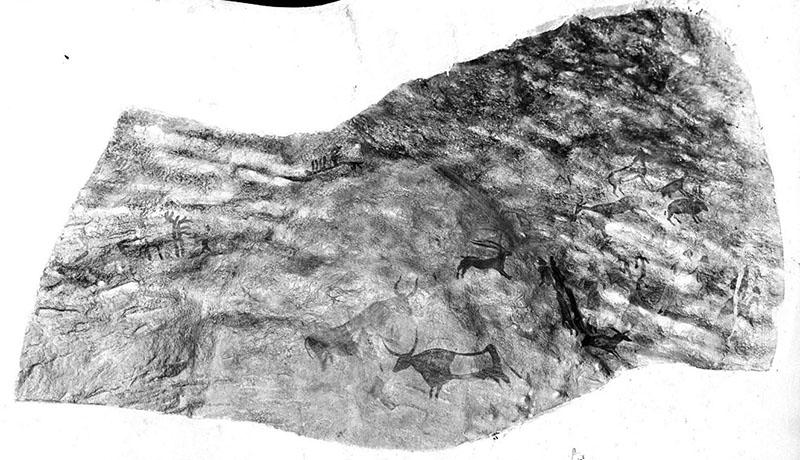 Roca dels Moros (el Cogul, Lleida). Motlle en relleu amb la representació de les pintures. Obra desapareguda. MAC. Arxiu Històric i Fotogràfic