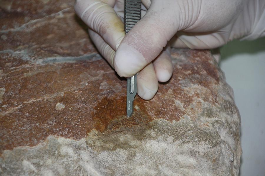 Detalle de la eliminación de restos de mortero depositados sobre la superficie, con ayuda de bisturí.