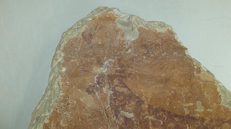 Figura 20A. Detalle de la reintegración cromática del mortero de cemento en el extremo superior de unión de la fractura. Antes de la reintegración.