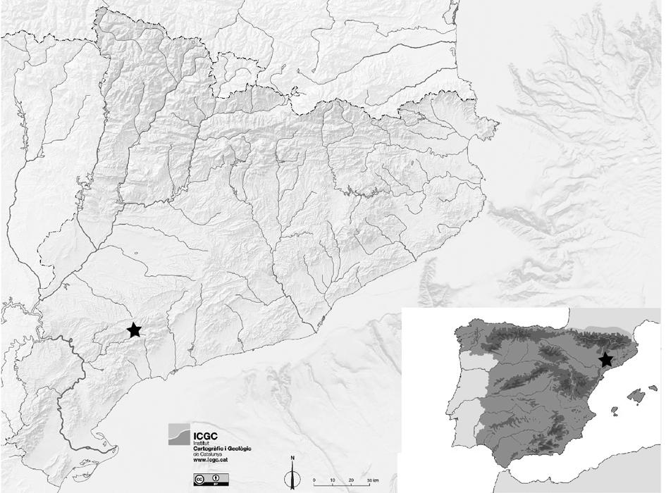 Localització de les Coves del Fem (Ulldemolins)