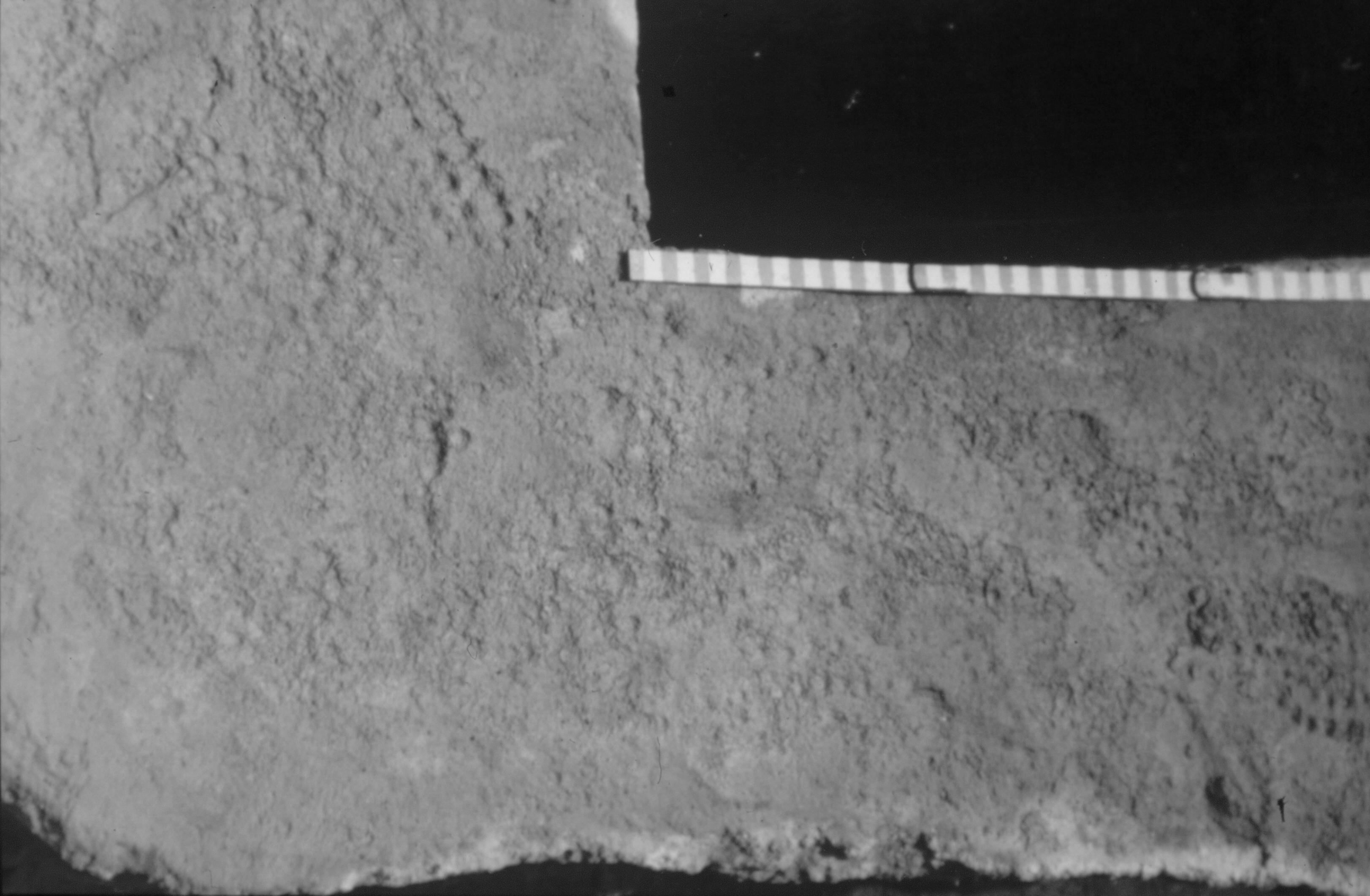 Fig. 2. Petjades de caligae (sandàlies amb sola clavetejada) marcades en els dipòsits